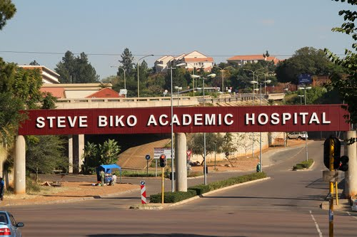 Steve Biko Vacancies